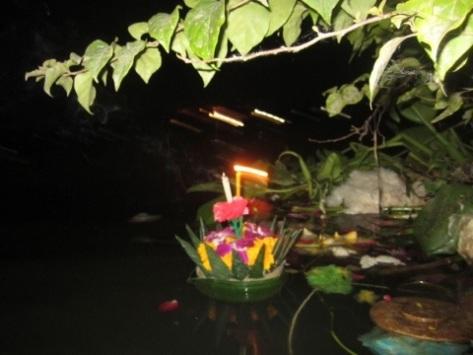 20111111-111923.jpg